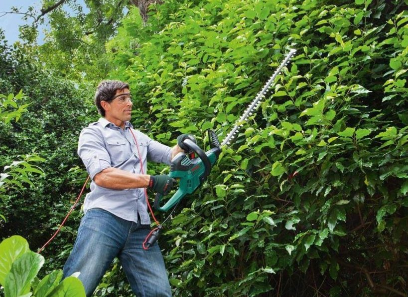 best_electric_hedge_trimmer