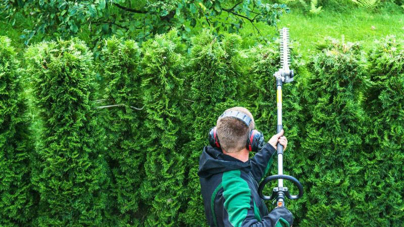 best_pole_hedge_trimmer