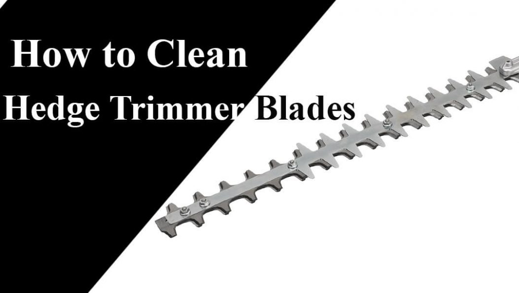 How_to_Clean_Hedge_Trimmer_Blades