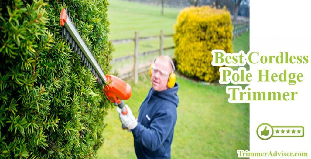best cordless pole hedge trimmer